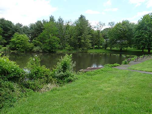 The pond at Banchoff Park