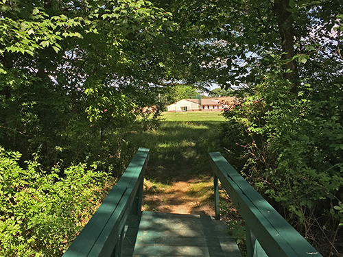 Bridge to Fisher Middle School at Watson Park