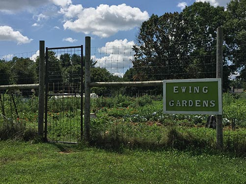 Community Gardens at Sherbrooke Prk